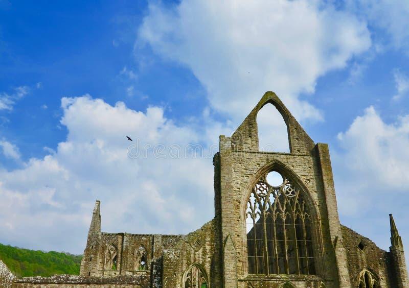 Великолепие аббатства стоковые изображения rf