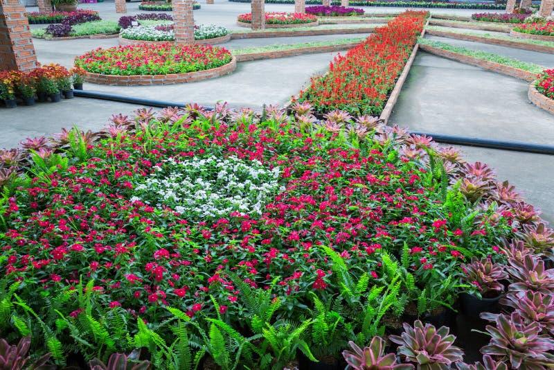 Великолепие вертикального сада стоковое изображение rf
