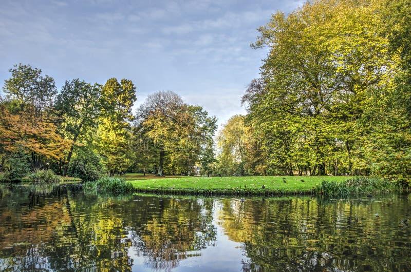 Великолепие осени в парке стоковая фотография rf