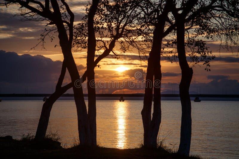 Великолепный заход солнца стоковые изображения