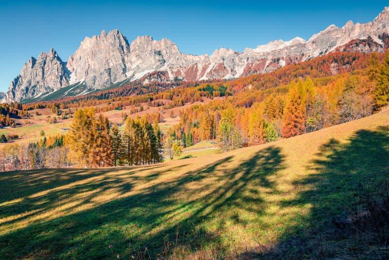 Великолепный солнечный вид на доломитские Альпы с лиственно-цветной осенней сценой гор Расположение Кортина д`Ампеццо, Италия, Ев стоковое изображение rf