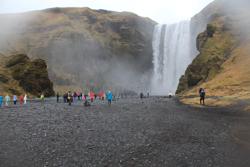 величественный водопад стоковые фото