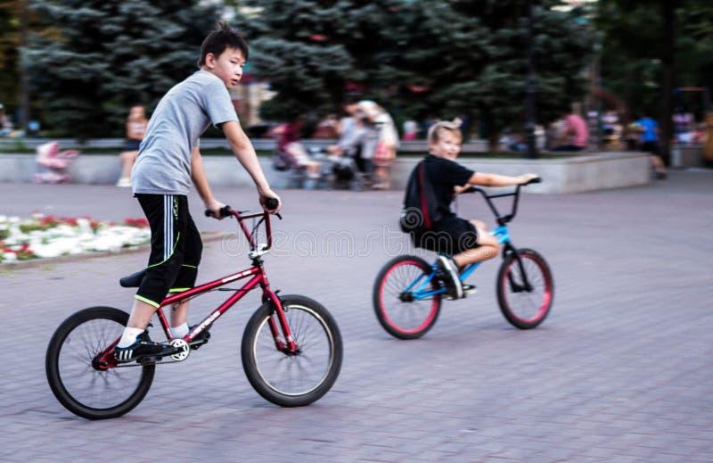 Велосипедисты в парке стоковые фотографии rf