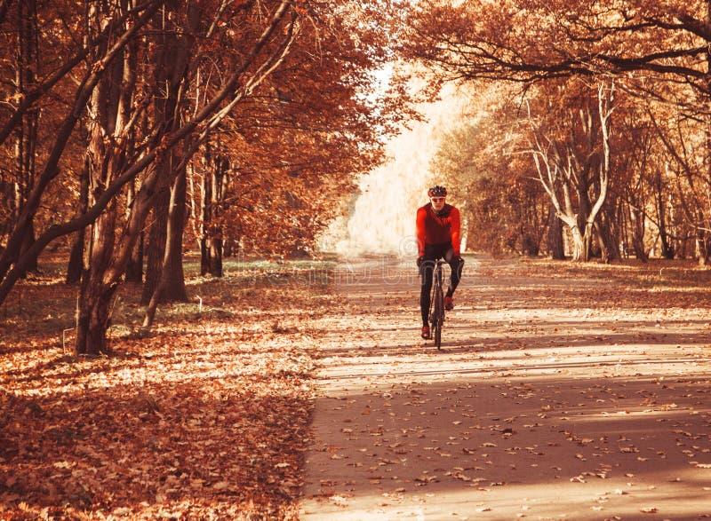 Велосипедист нося шлем и стекла ехать велосипед в парке осени, ландшафте осени стоковое изображение rf