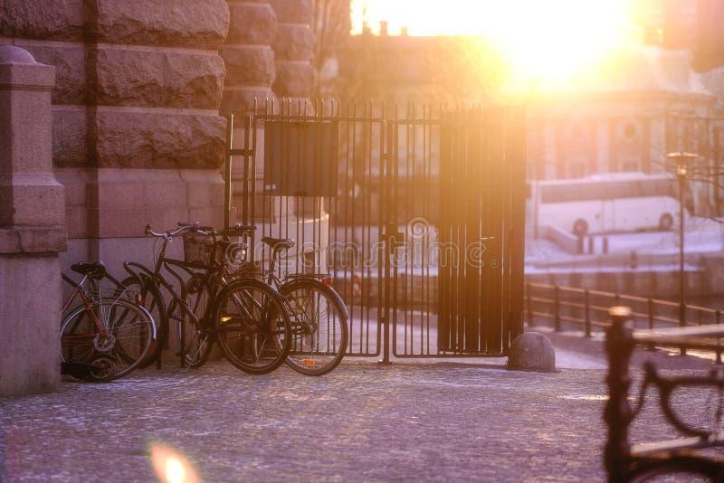 Велосипеды в городе, выравнивая солнечный свет стоковое фото