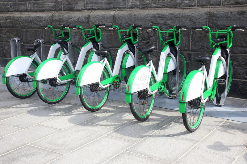 Велосипеды города для ренты стоковые фотографии rf