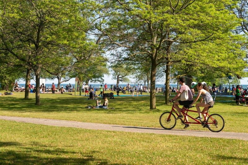 Велосипеды людей ехать на острове центра Торонто летом 2019 стоковые изображения