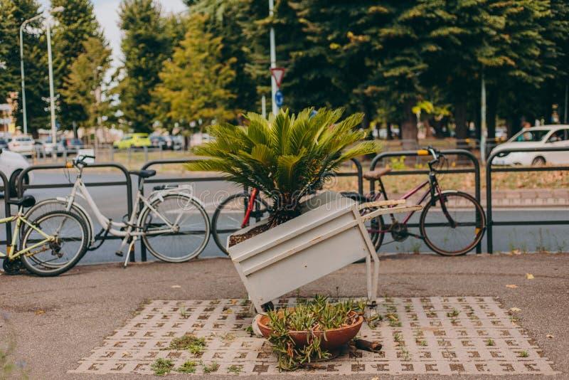 Велосипеды на улице в Европе в Италии стоковое изображение rf