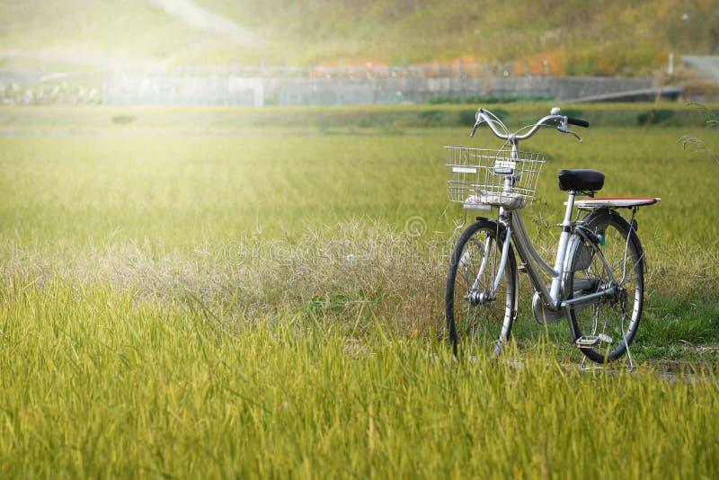 Велосипед в поле, Япония стоковые изображения