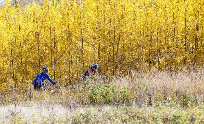 велосипед гора пар стоковое фото