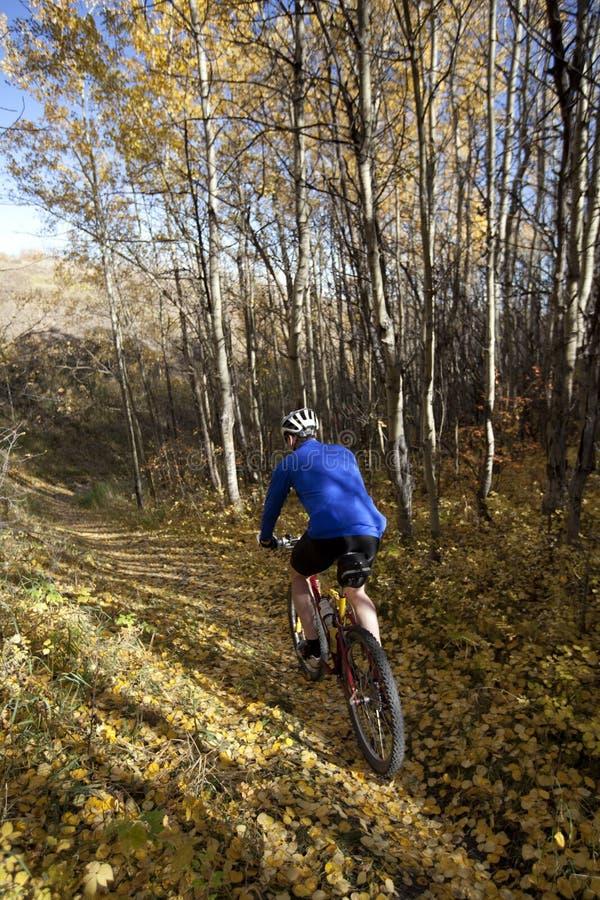 велосипед гора человека стоковое фото rf