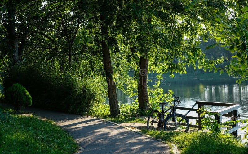 Велосипед озером стоковое изображение