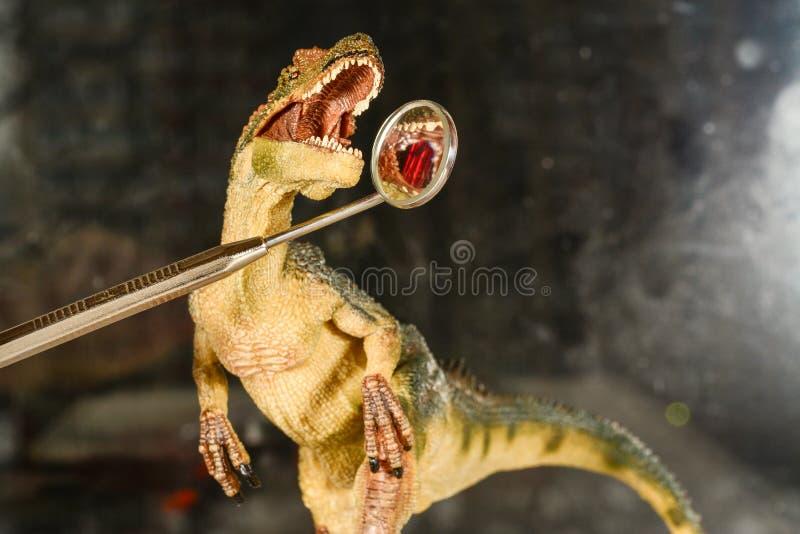 Велоцираптор динозавра смотрит зубы в зубоврачебном зеркале Концепция зубоврачебной заботы Динозавр игрушки на приеме стоковое изображение rf