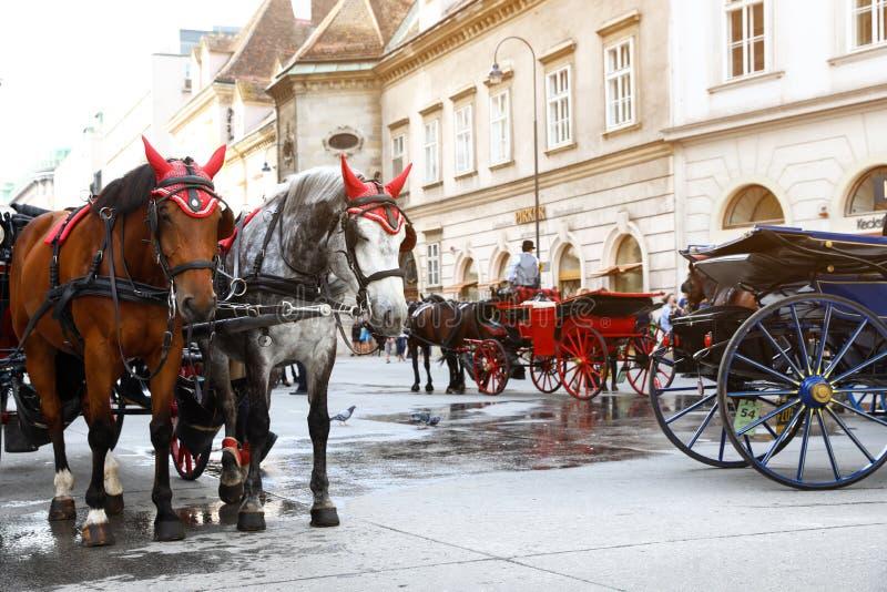 ВЕНА, АВСТРИЯ - 26-ОЕ АПРЕЛЯ 2019: Экипажи лошади вычерченные на городе стоковая фотография rf