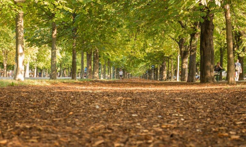 Вена переулка Prater стоковое изображение