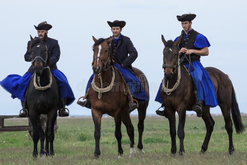 Венгерские ковбои стоковые фотографии rf