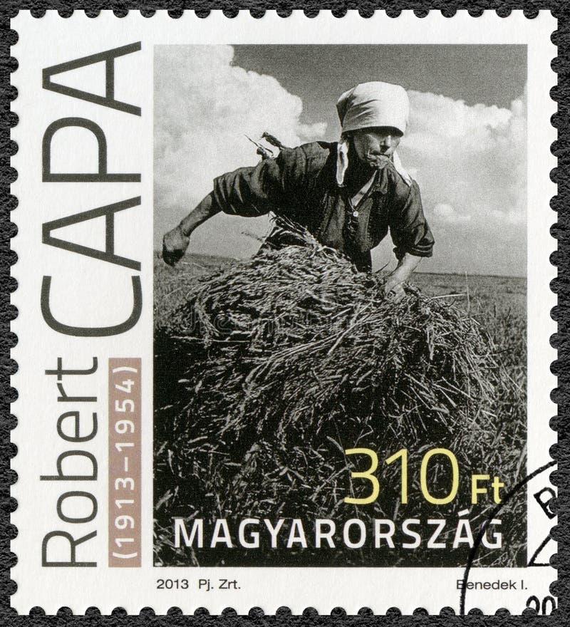 ВЕНГРИЯ - 2013: женщина выставок собирая пачку сена на коллективном хозяйстве Украине, августе 1947, Роберте Capa Андре Friedmann стоковое фото