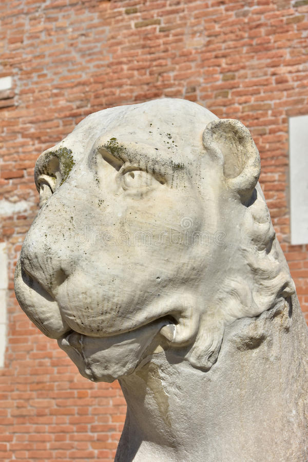 Венецианский лев арсенала стоковые изображения rf