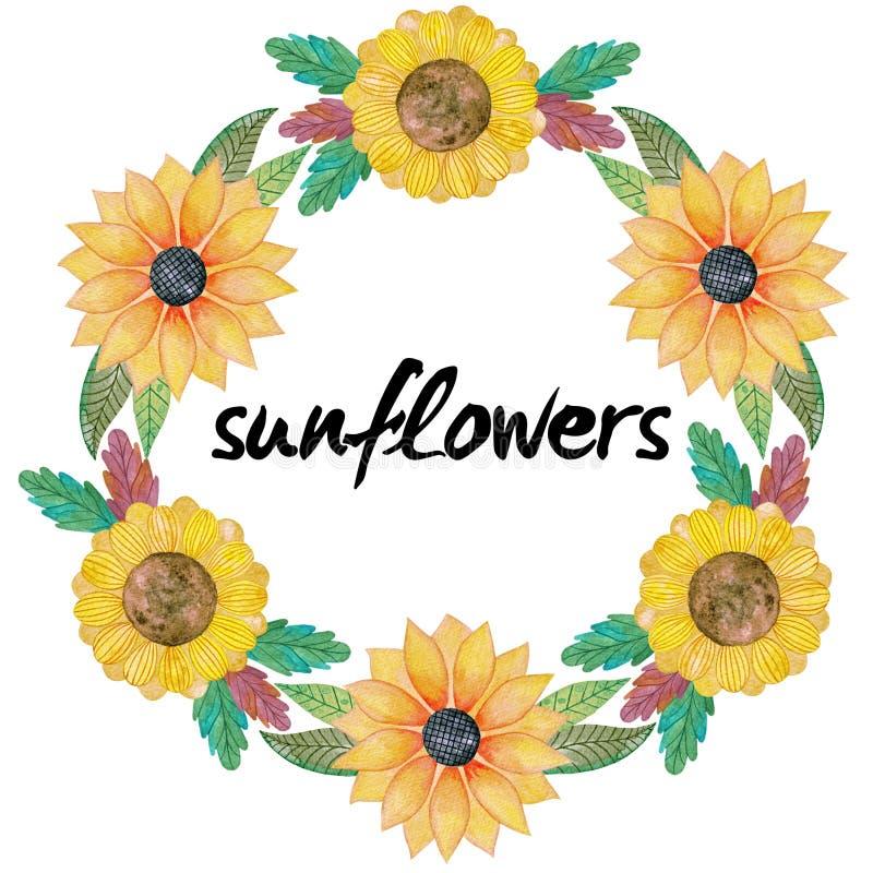 Венок акварели с солнцецветами и листьями стоковое фото rf
