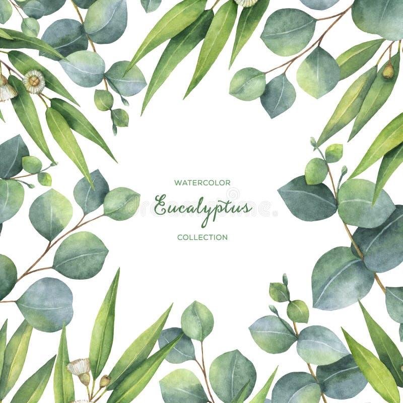 Венок акварели квадратный с зелеными листьями и ветвями евкалипта иллюстрация вектора