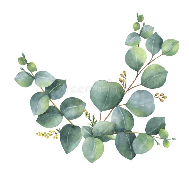 Венок вектора акварели с зелеными листьями и ветвями евкалипта иллюстрация вектора