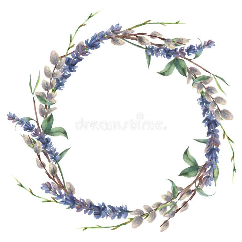 Венок весны акварели Вручите покрашенную границу с ветвью лаванды, вербы и дерева при листья изолированные на белизне иллюстрация вектора