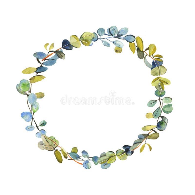 Венок весны с деревьями эвкалипта акварели на белой предпосылке иллюстрация вектора