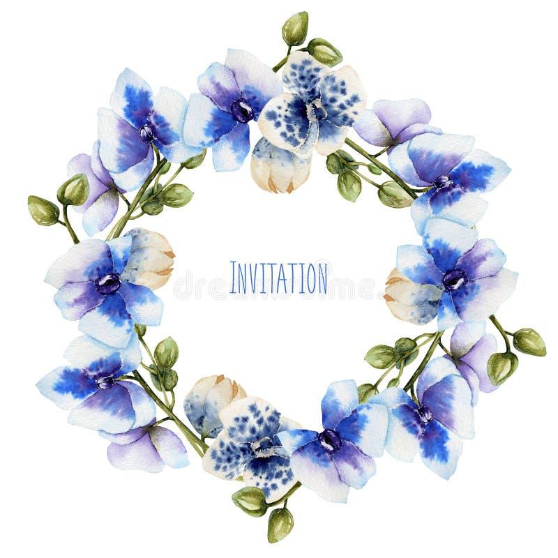 Венок голубых орхидей акварели иллюстрация штока
