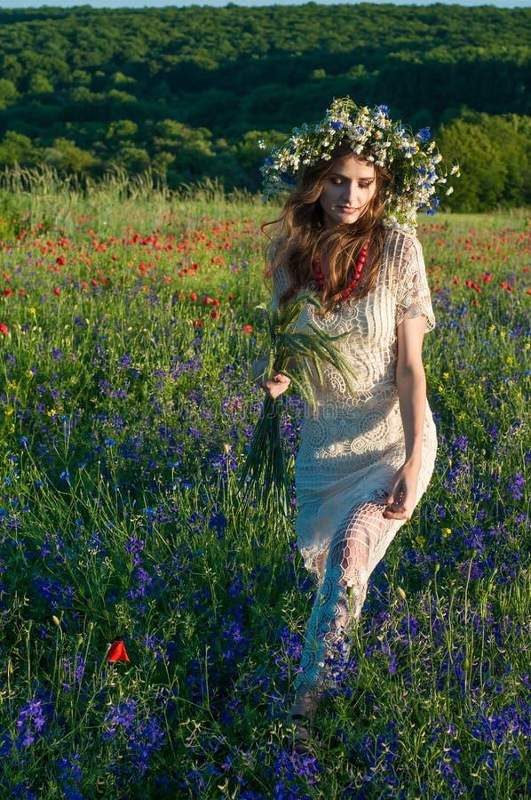 венок девушки цветков Сторона красивой украинской девушки в венке лета цветет на природе стоковая фотография rf