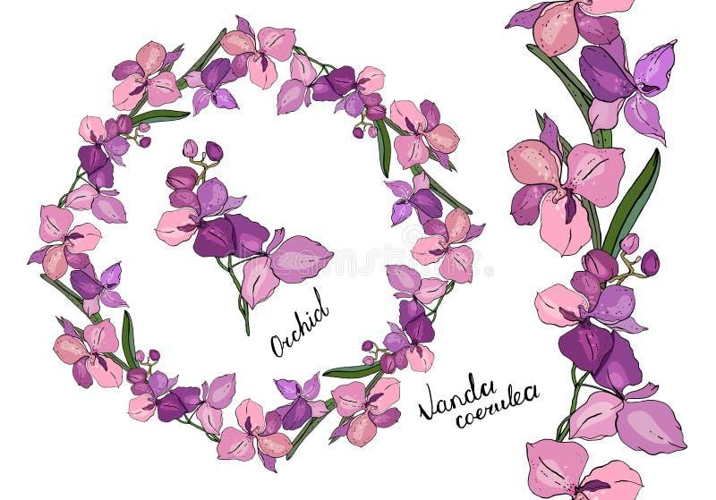 Венок и вертикальная бесконечная граница сделанные различных орхидей иллюстрация вектора