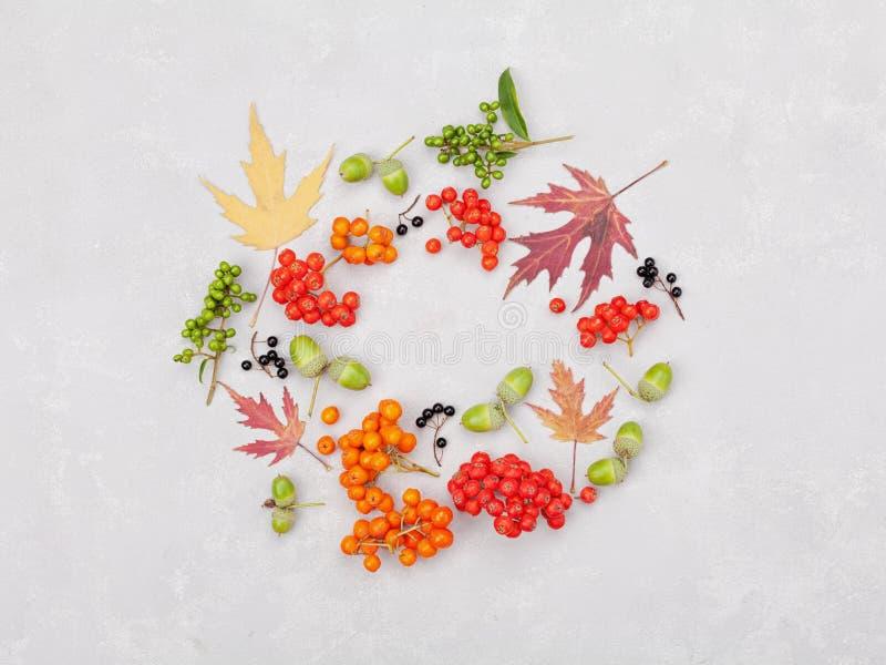 Венок осени от листьев, рябины, жолудей, цветков и ягоды на серой предпосылке сверху плоский стиль положения стоковое изображение rf