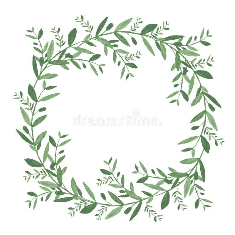 Венок оливки акварели Изолированная иллюстрация вектора иллюстрация вектора