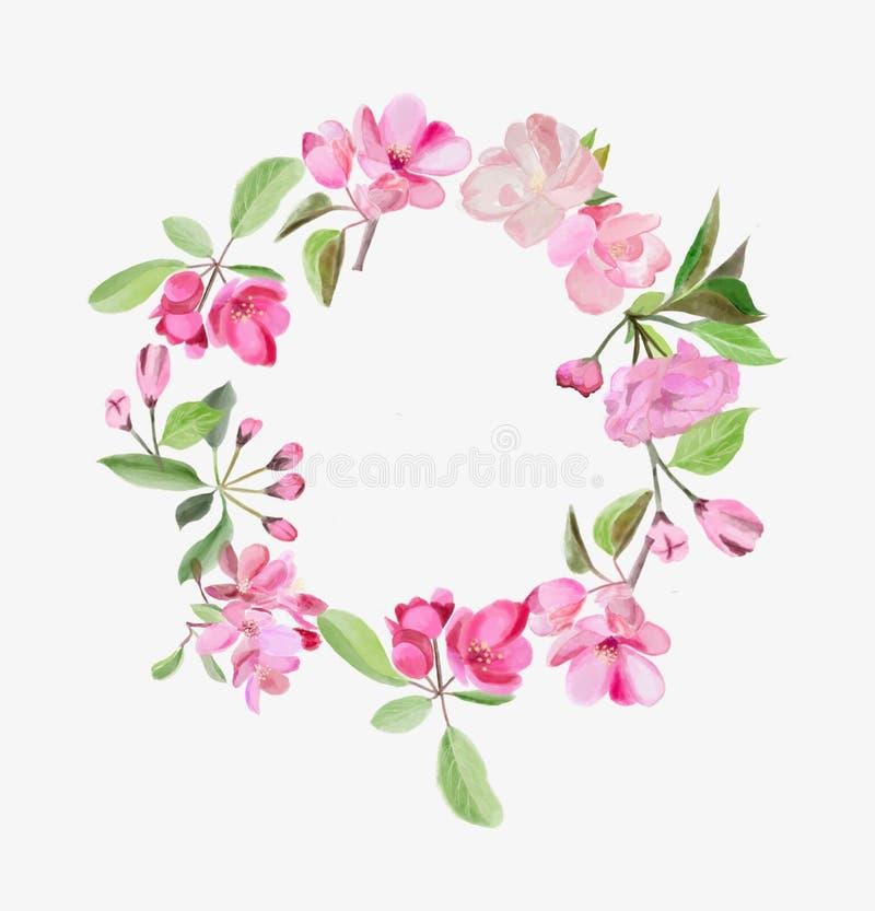 Венок с цветками вишни и яблони пинка цветения иллюстрация вектора