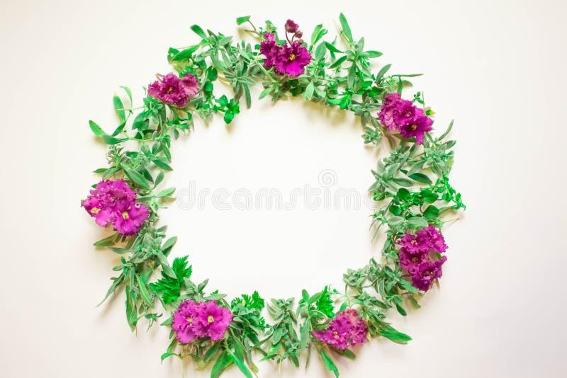 Венок фиолетов на белой предпосылке Круглая рамка пурпурных цветков и свежей травы лето сада цветков цветения Плоское положение,  стоковые фото