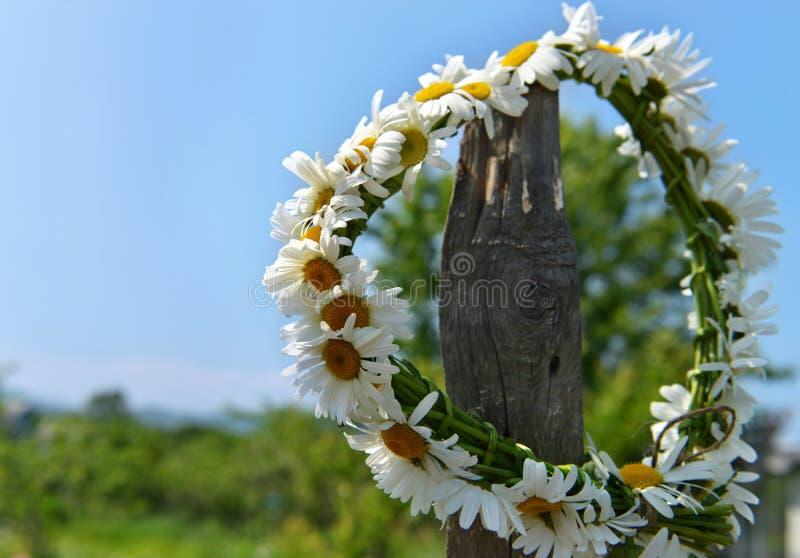 Венок цветков маргаритки против предпосылки неба стоковое изображение