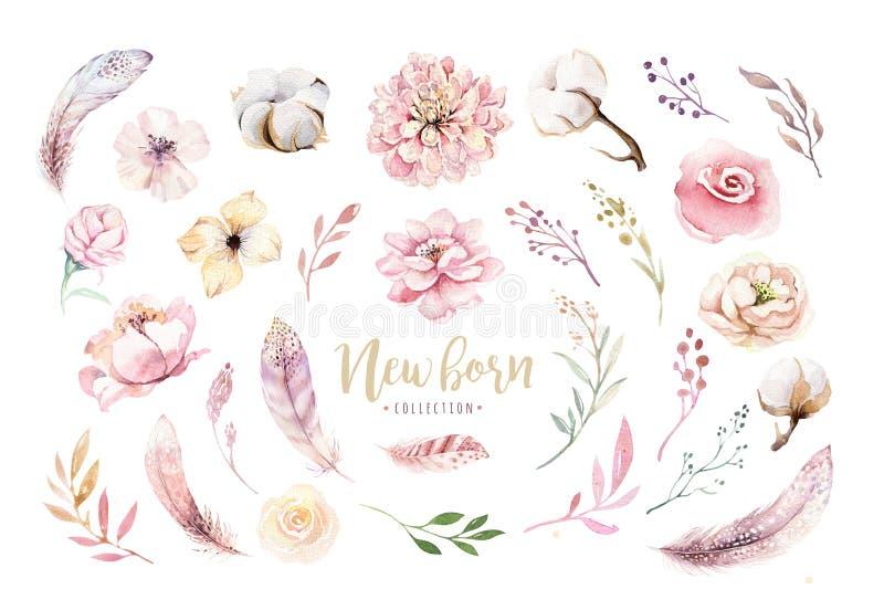 Венок boho акварели флористический с хлопком и пионами Богемская естественная рамка: листья, пер, цветки, изолированные дальше бесплатная иллюстрация