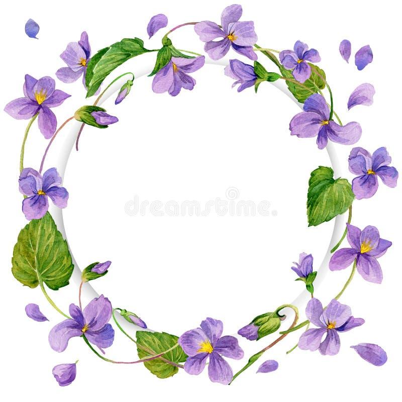Венок violetand леса и молодой зеленой травы иллюстрация штока