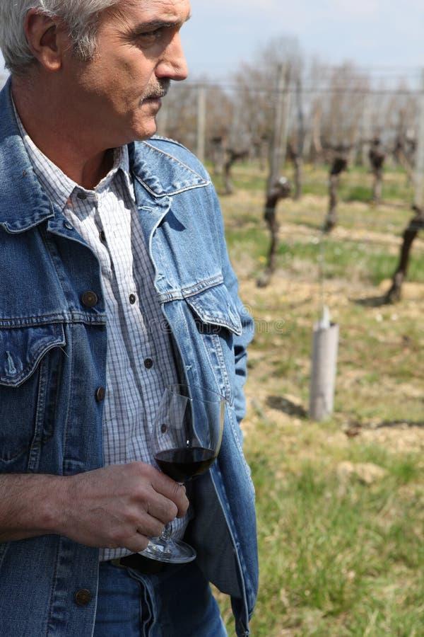 вентилятор держа красное вино стоковые фото