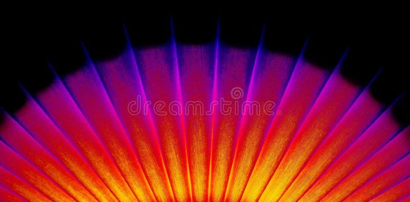 вентилятор неоновый oriental стоковые фото