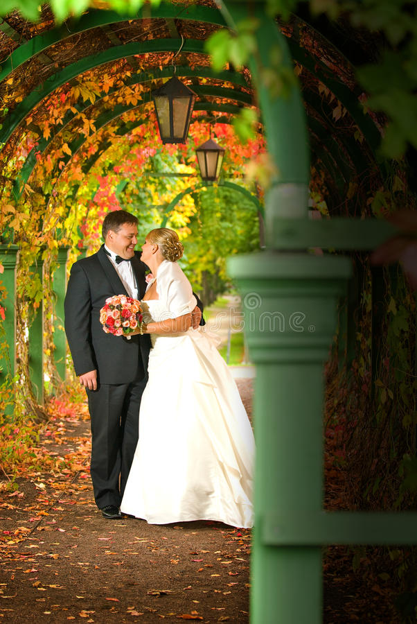 венчание пар стоковая фотография rf