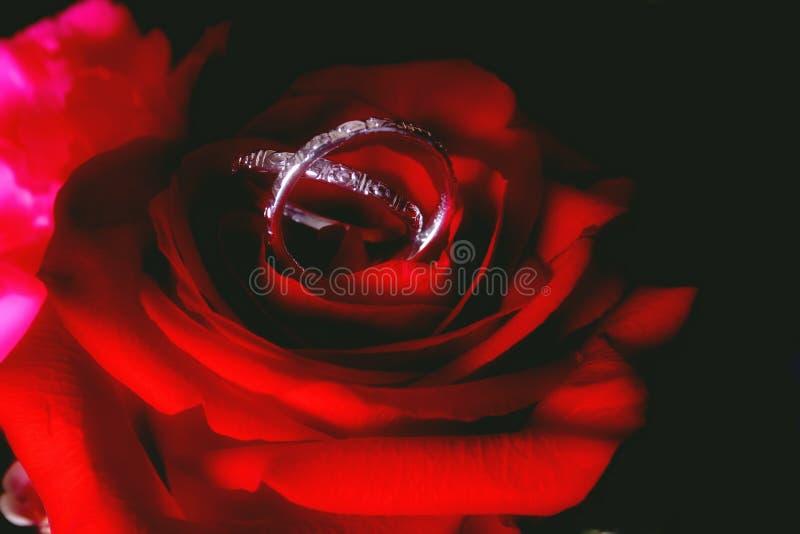 венчание полос розовое стоковое изображение