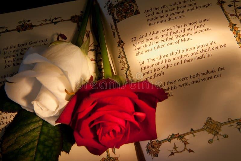 венчание текста кануна s adam стоковая фотография rf