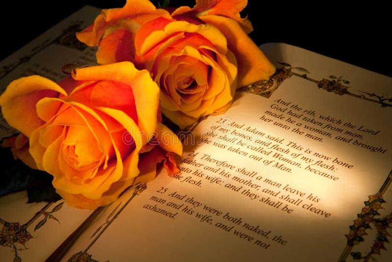 венчание текста происхождения стоковые фотографии rf