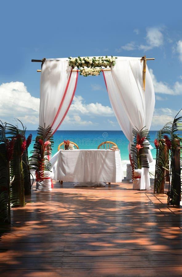 венчание тесемки приглашения цветка элегантности детали украшения предпосылки стоковое изображение