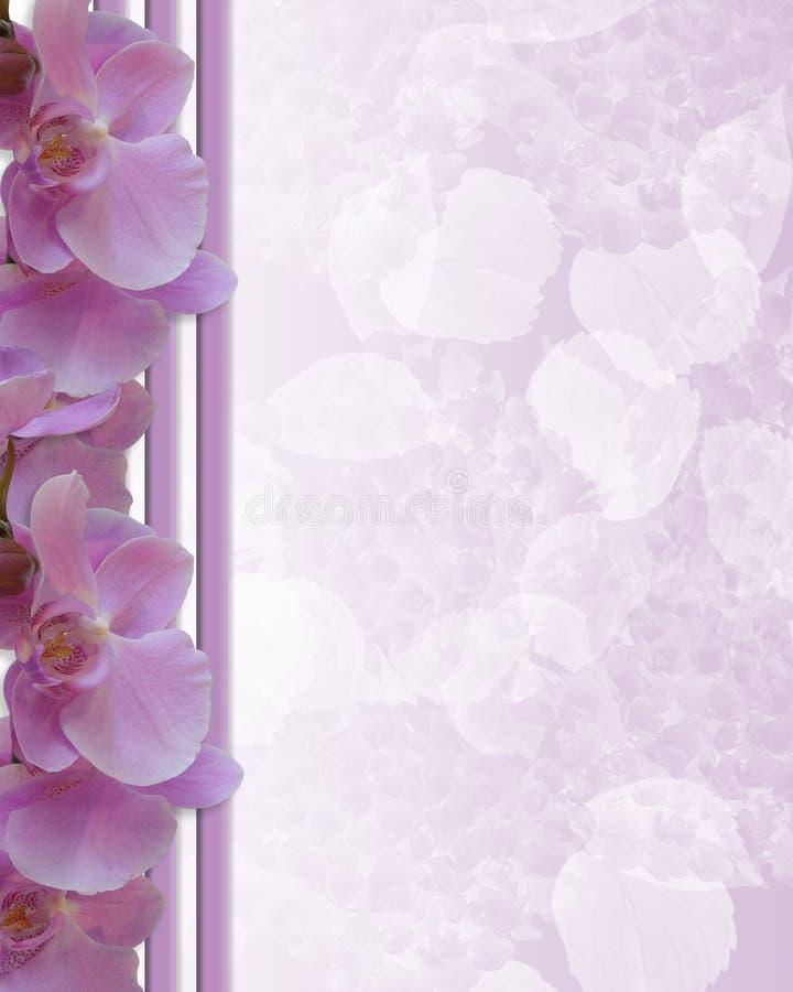 венчание флористических орхидей граници розовое иллюстрация вектора