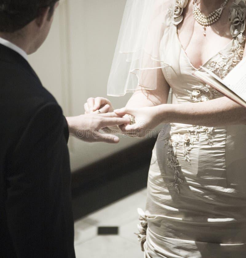 венчание стоковые изображения