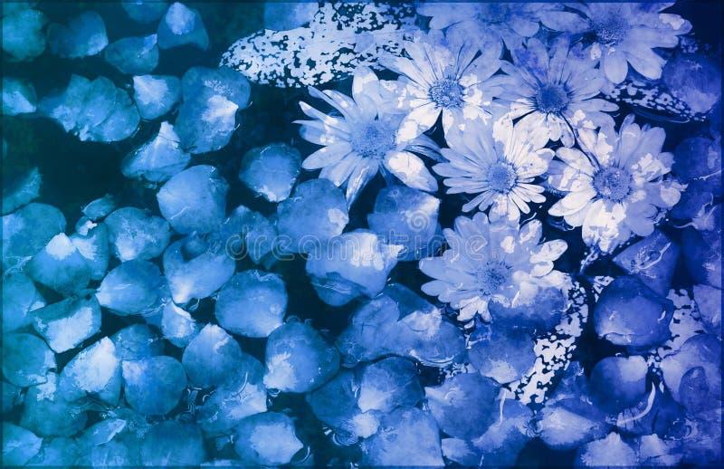 венчание scrapbook цветков предпосылки голубое флористическое иллюстрация вектора