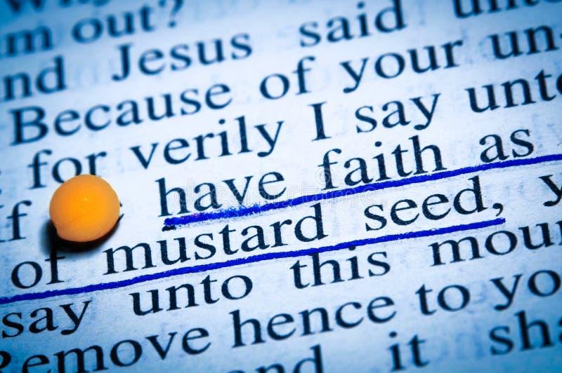 Вера как горчичное зерно стоковые изображения rf