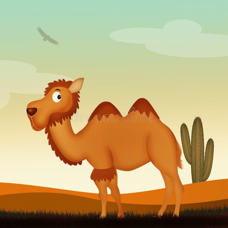 Верблюд в пустыне иллюстрация штока