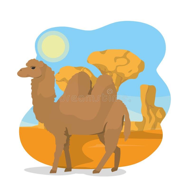 Верблюд на пустыне бесплатная иллюстрация